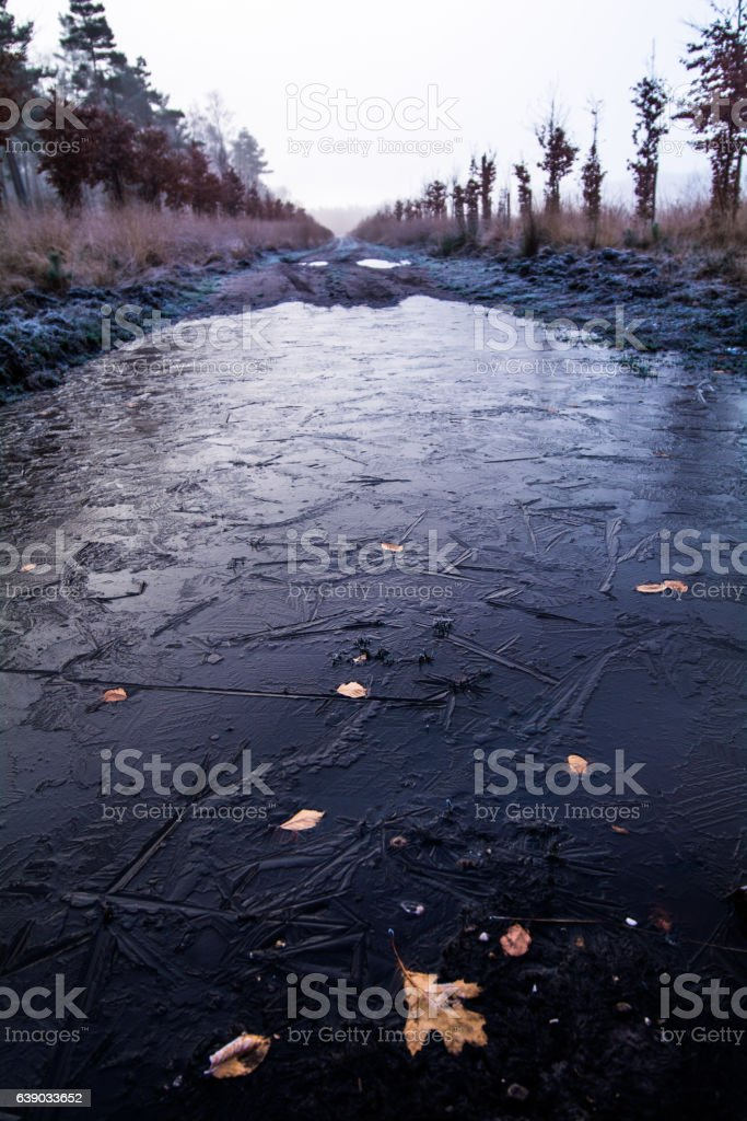 Erster Frost auf den Wanderwegen stock photo