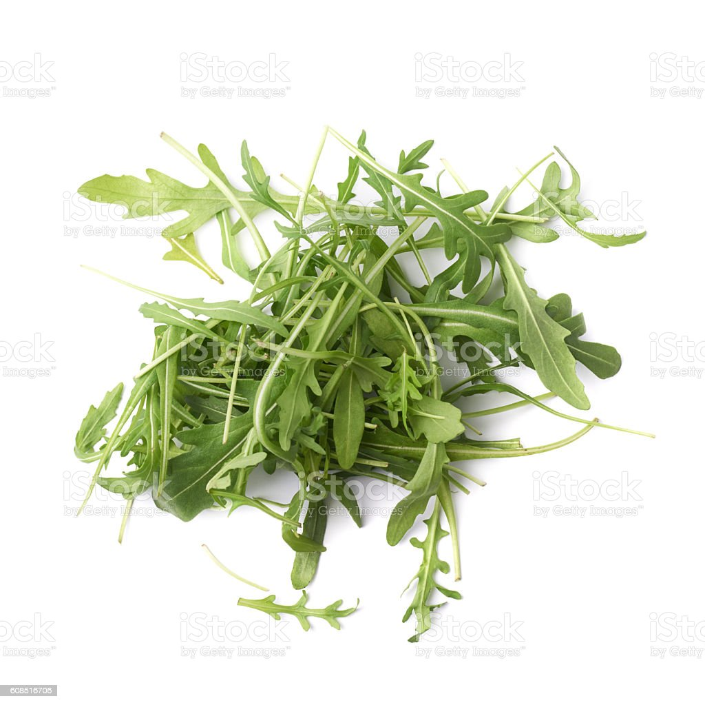 Eruca sativa rucola rocket salad stock photo