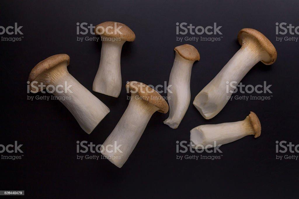 Eryngii Mushroom stock photo