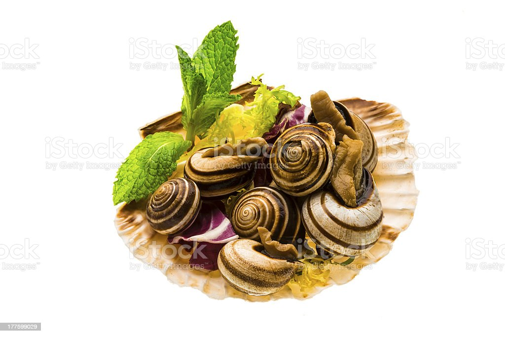 Escargot with asparagus, rosemary, thymus and tomato royalty-free stock photo