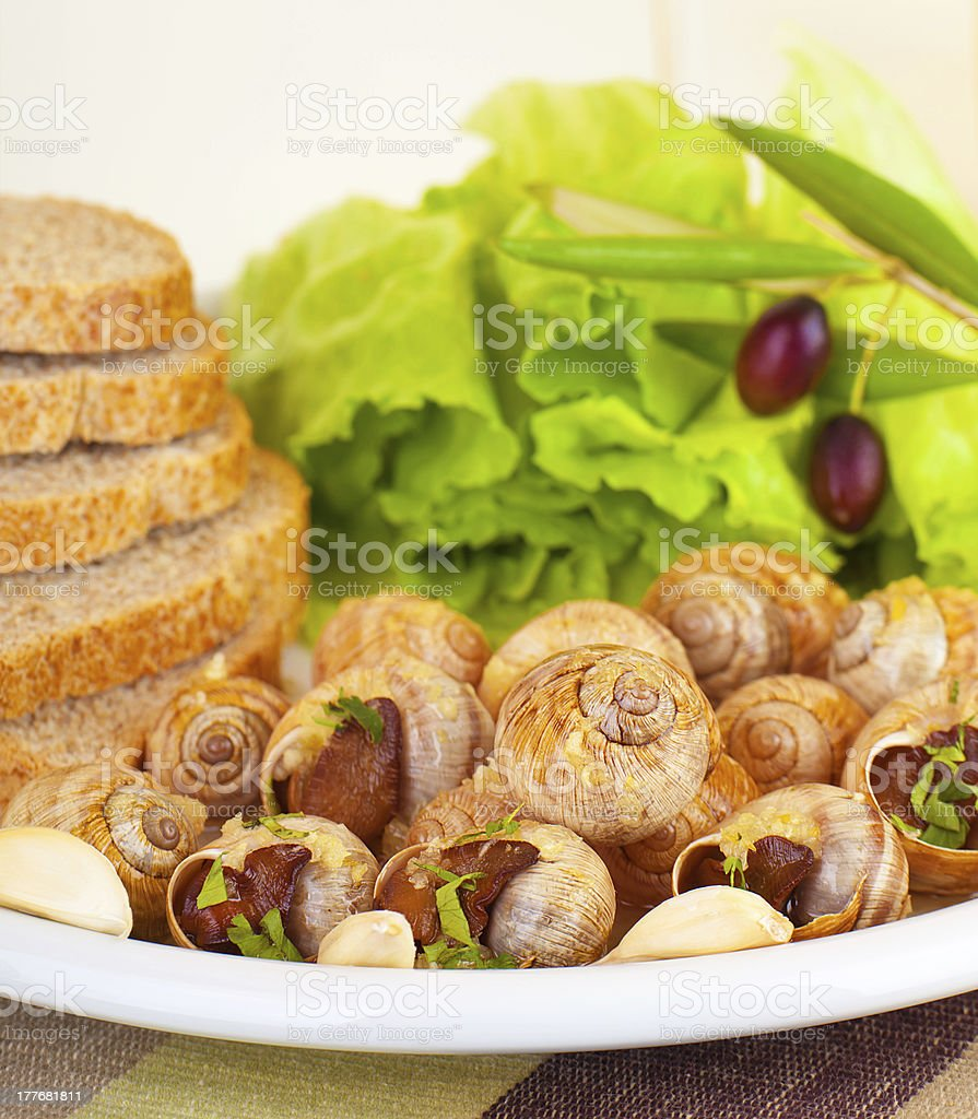 Escargot with green salad royalty-free stock photo