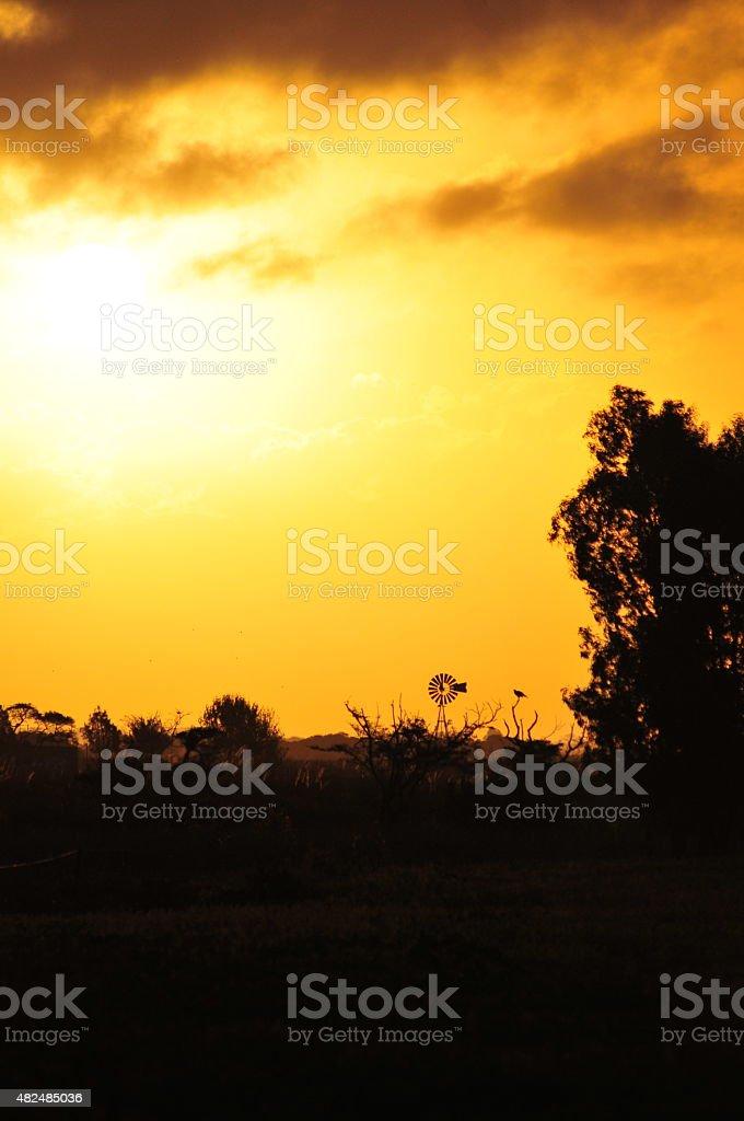 Escena de un atardecer en el campo stock photo
