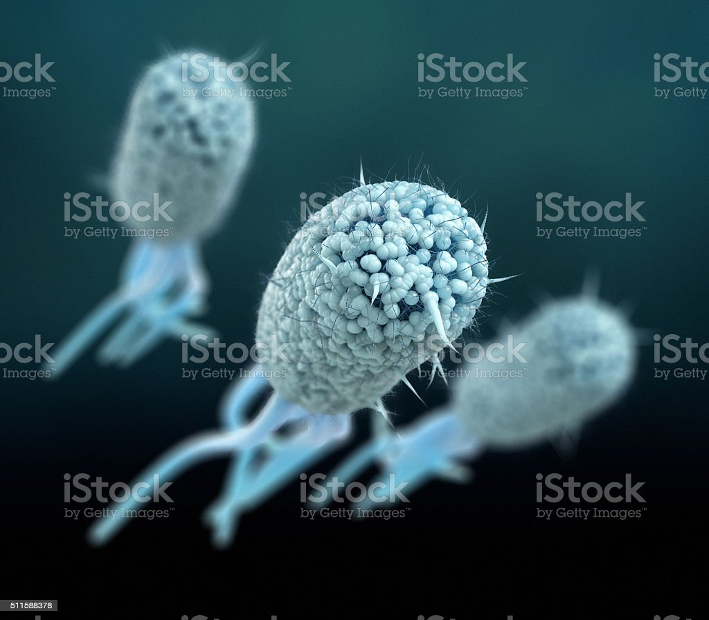 Escherichia Coli (E. Coli.) stock photo