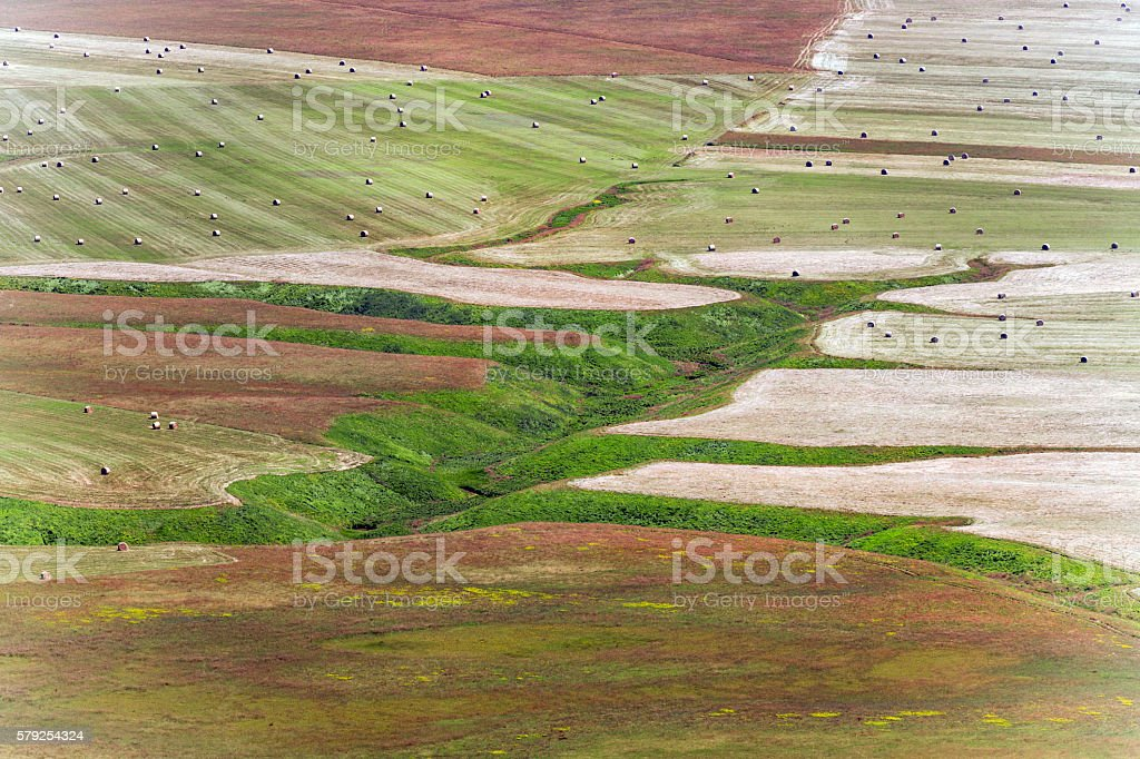 Esophagus Castelluccio field with bales of hay,Italy stock photo