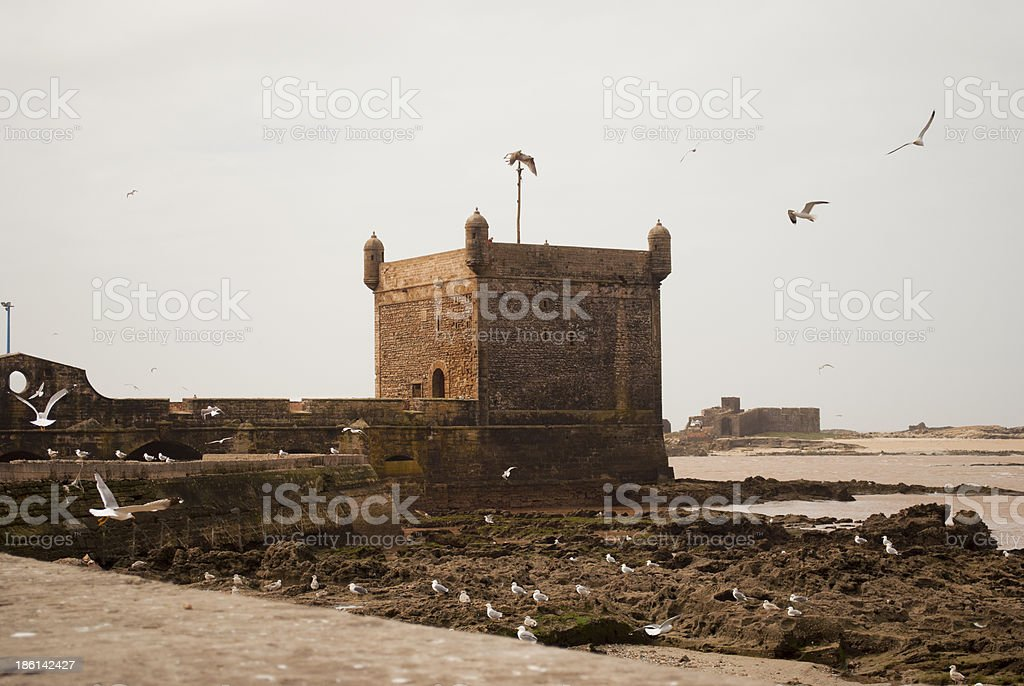Essaouira fortress stock photo