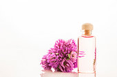 Essence of red clover flowers isolated