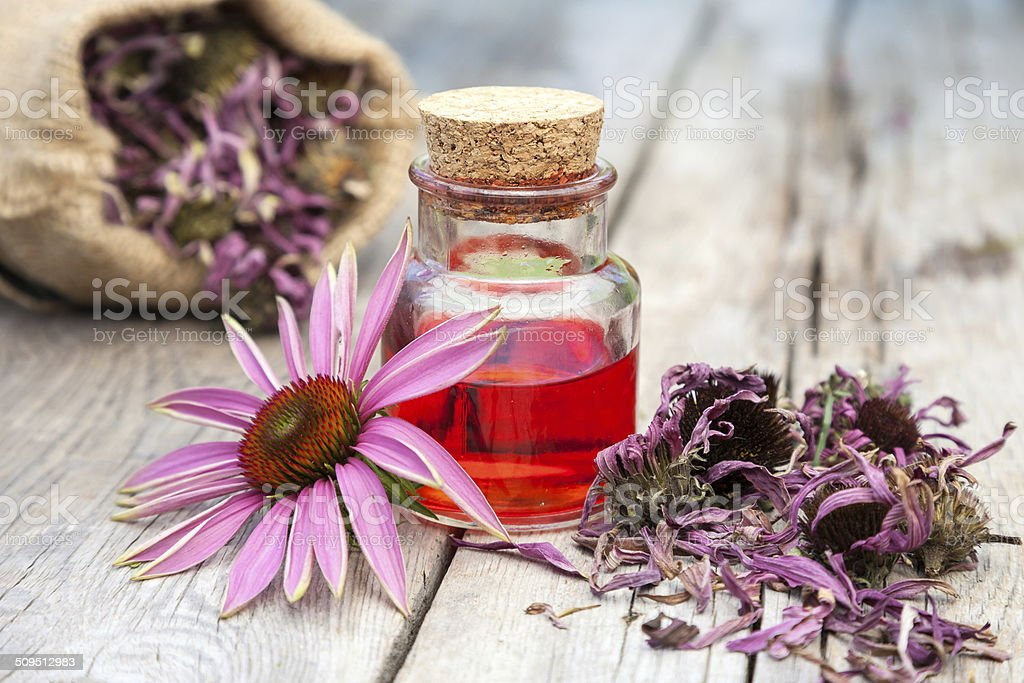 essential oil and coneflowers on wooden rustic table stock photo