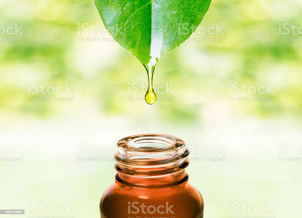 Essential oil dropping from leaf .Aromatherapy. stock photo