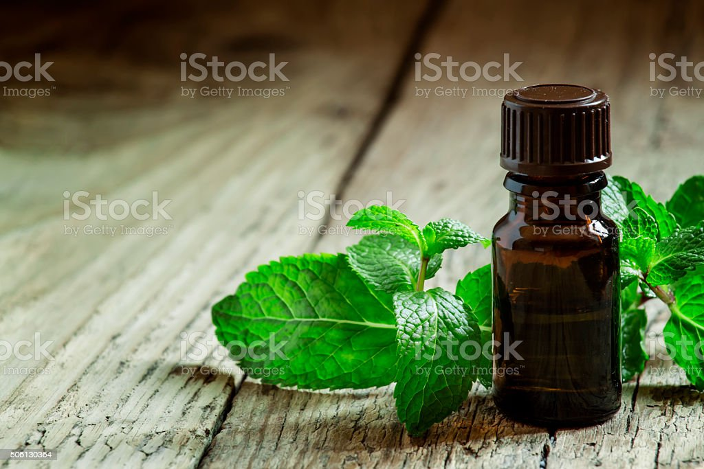 Essential oil of peppermint in a small brown bottle stock photo