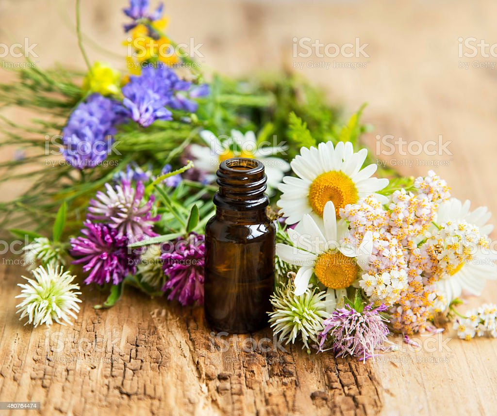 Essential Oil with Medicinal Herbs and Flowers for Alternative T stock photo
