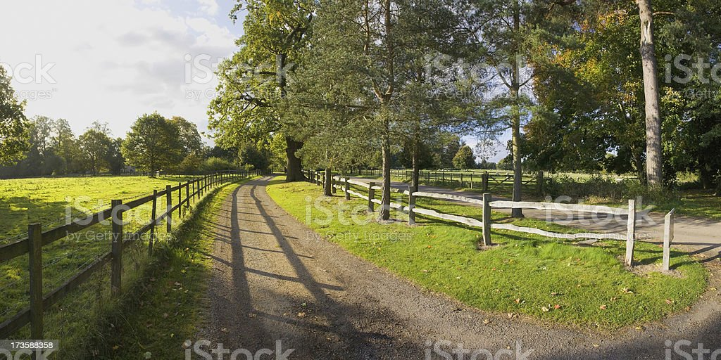 estate stock photo