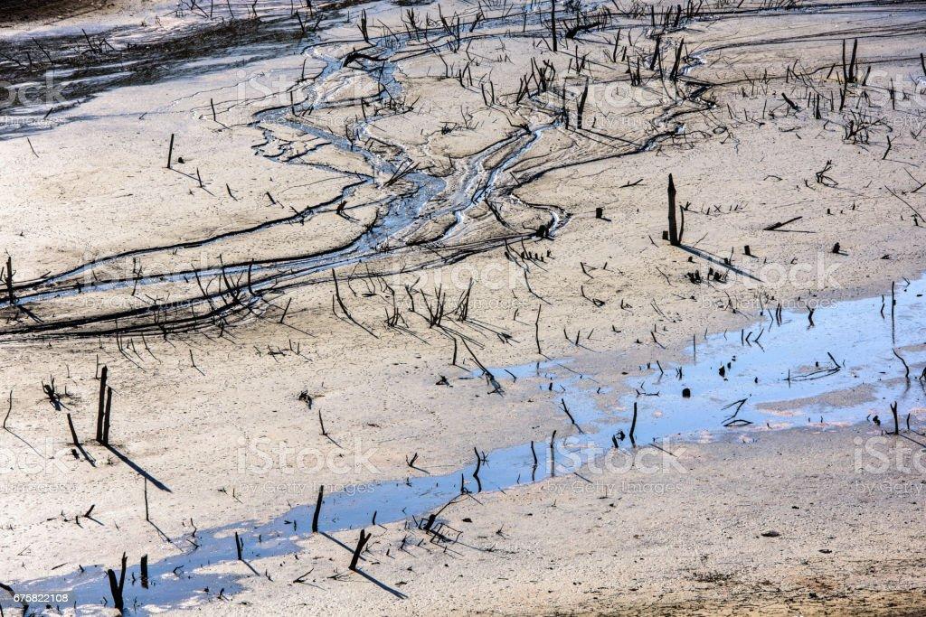 Estuary of small river, mud and sediment. stock photo