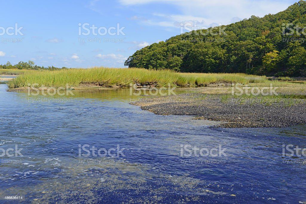 Estuary transition zone between fresh water and marine environment stock photo