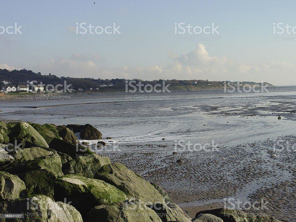 Estuary view royalty-free stock photo