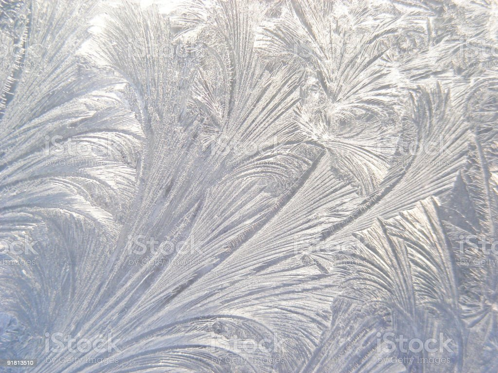 Etched in ice royalty-free stock photo