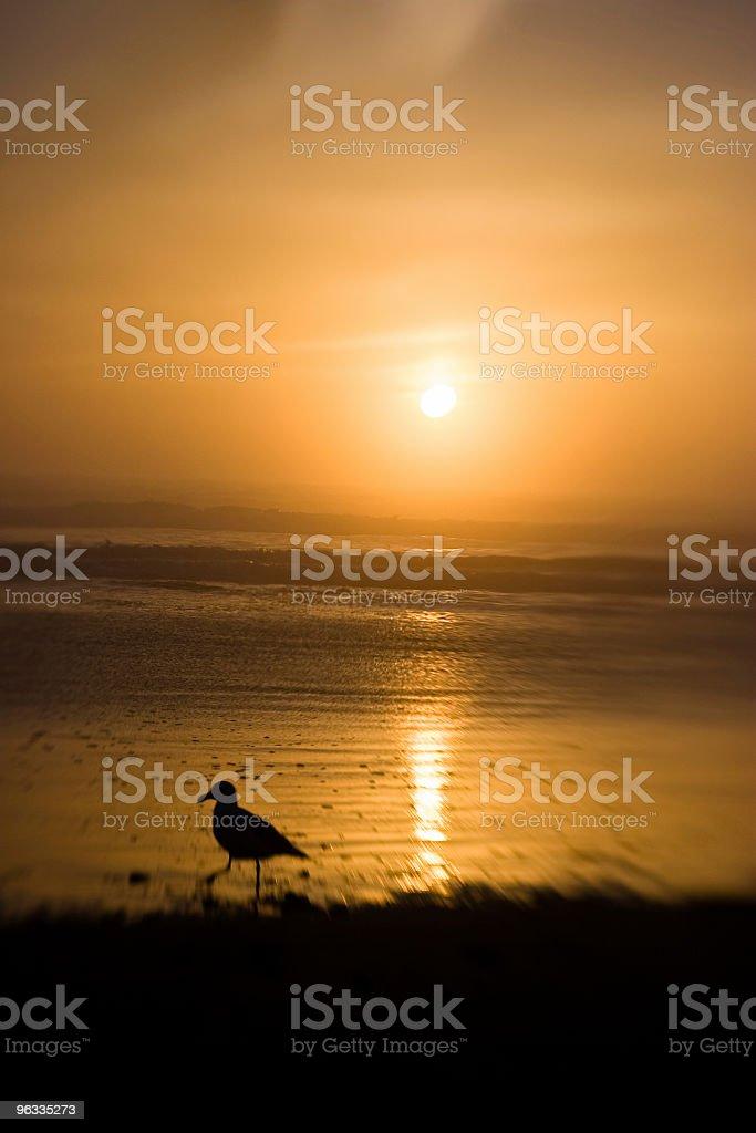 Ethereal Sunset stock photo