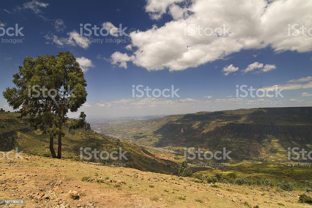 Ethiopian Landscape, Canyon of Debre Libanos royalty-free stock photo