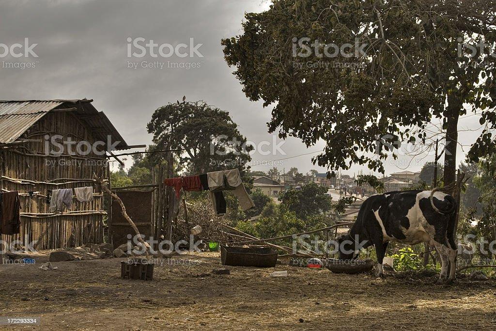Ethiopian life in a slum royalty-free stock photo