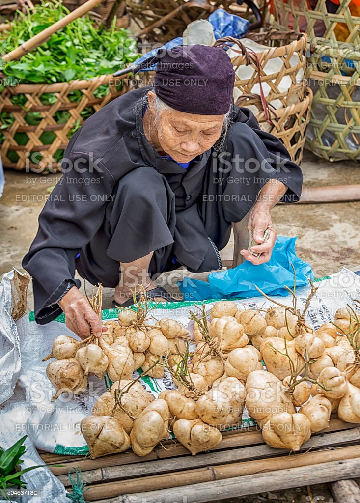 Ethnic old woman in markets selling cassava countryside stock photo