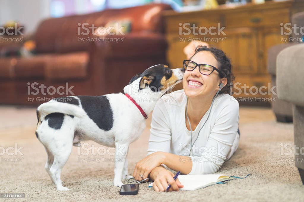 Ethnic woman in her 20s plays with dog on living room floor stock photo