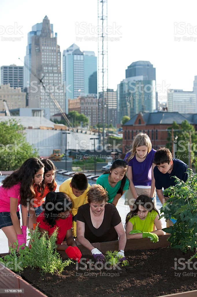Ethnically diverse kids going green and planting in urban stock photo