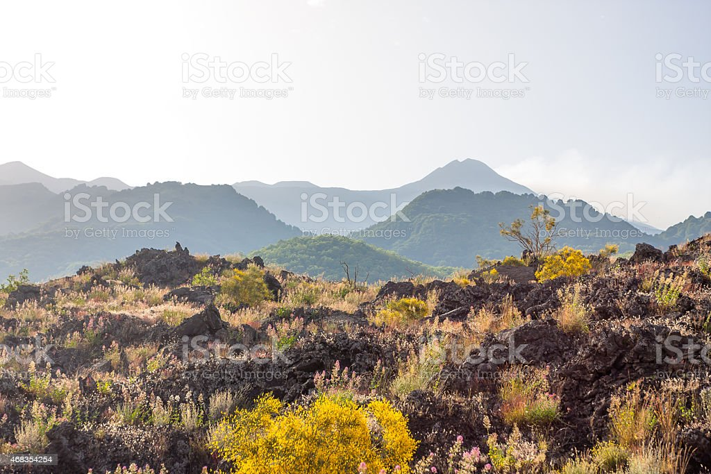 Etna summit craters of south-east panorama, Sicily stock photo