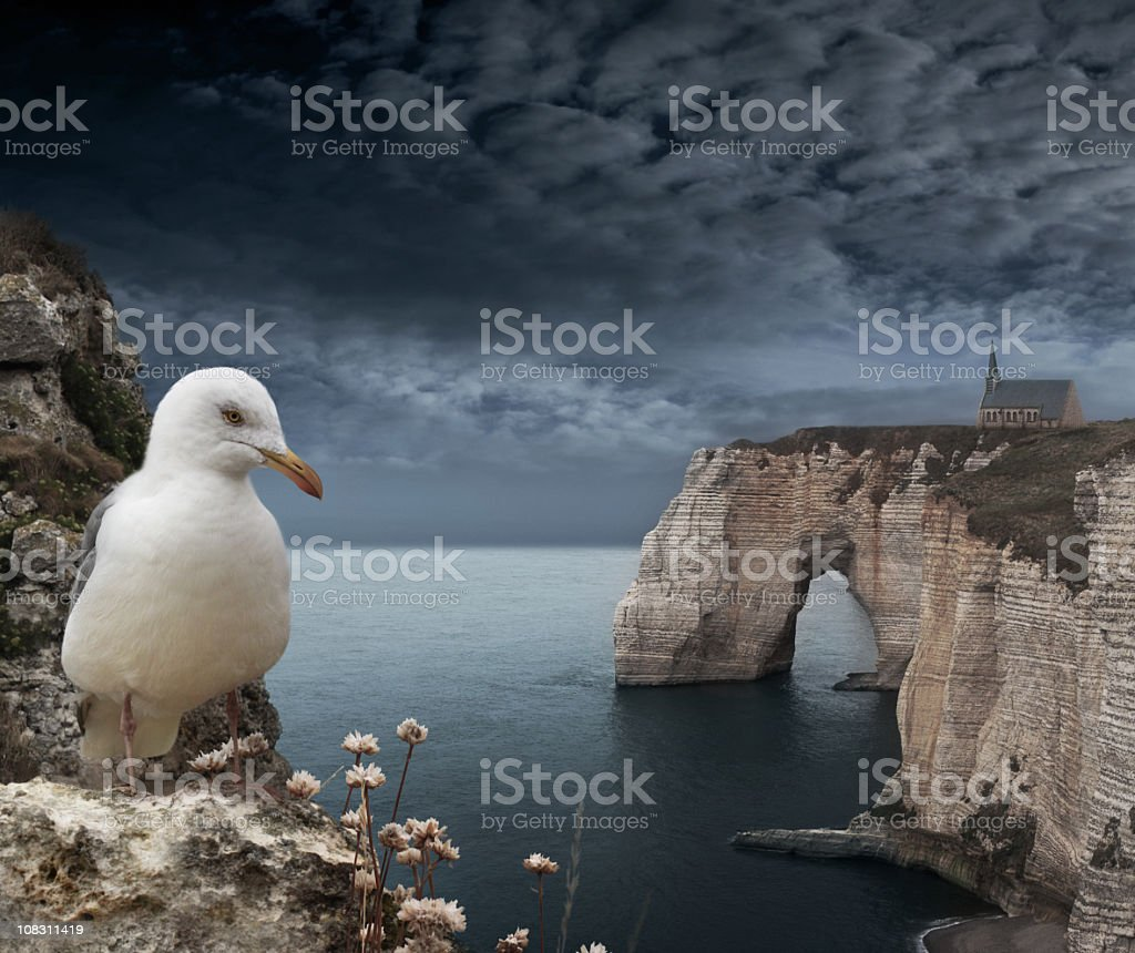 Etretat cliffs with seagull in dark storm weather stock photo