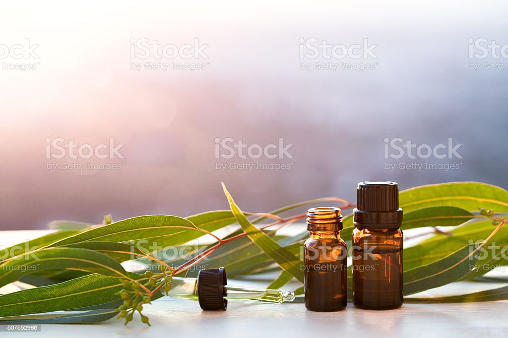 Eucalyptus aromatherapy essential oils in bottles stock photo