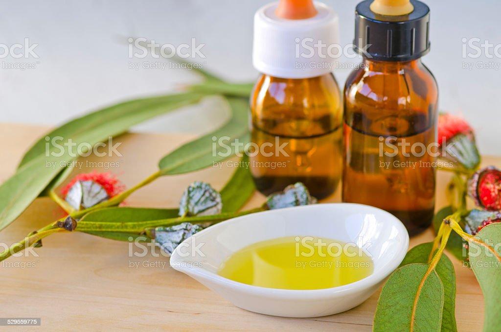Eucalyptus essential oil. stock photo