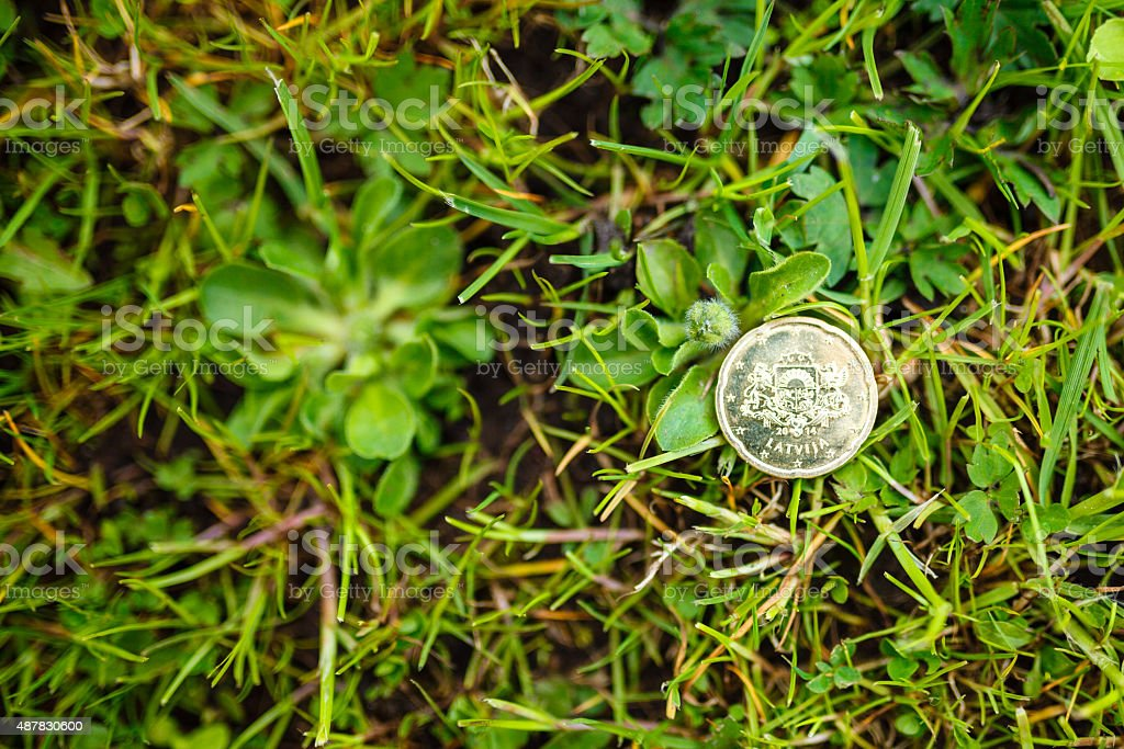 20 Euro Cents on the green grass stock photo