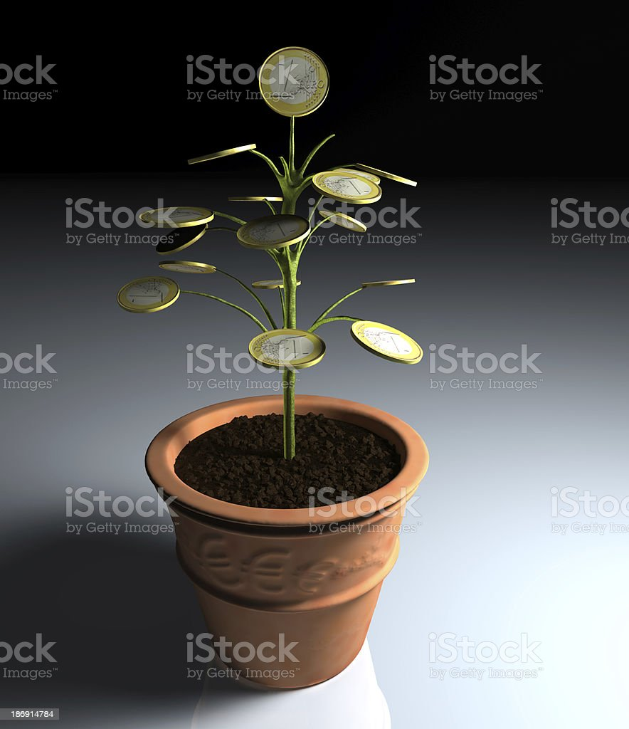 Euro money little tree in a vase on shade royalty-free stock photo