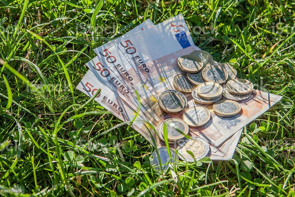 Euro money on grass stock photo