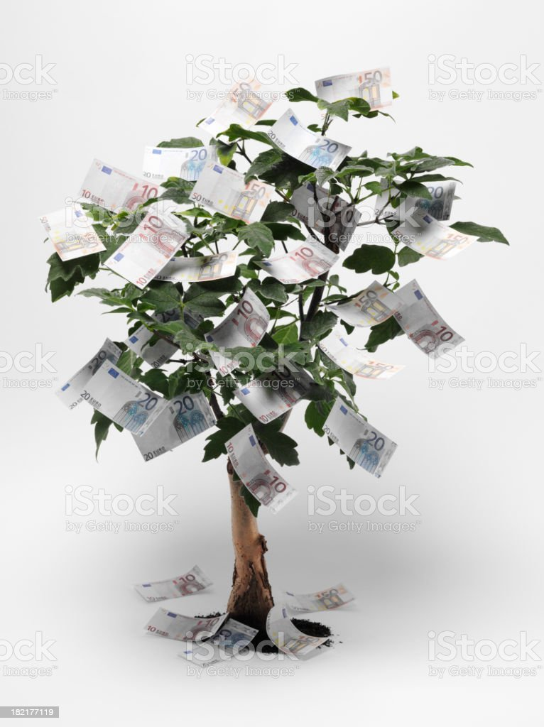 Euro Money Tree royalty-free stock photo