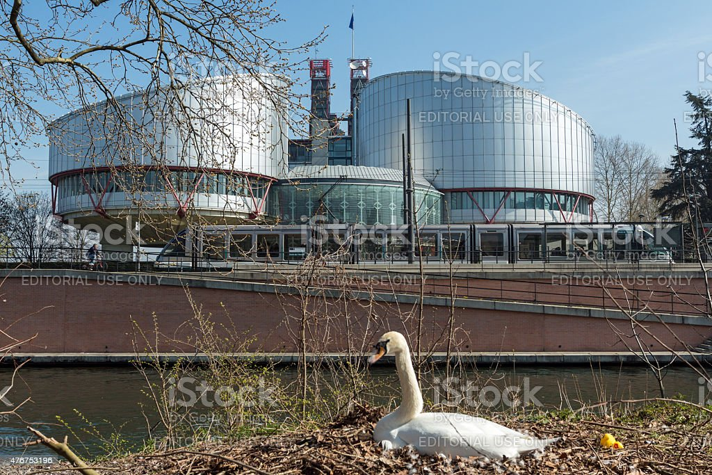 European Court of Human Rights in Strasbourg with breeding swan stock photo