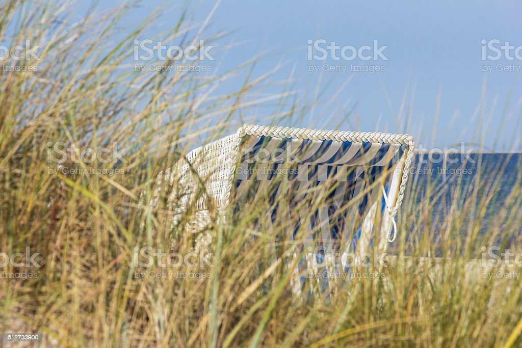European dune grass stock photo