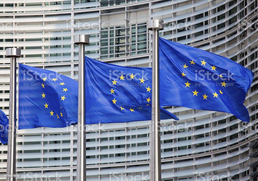 European flags royalty-free stock photo