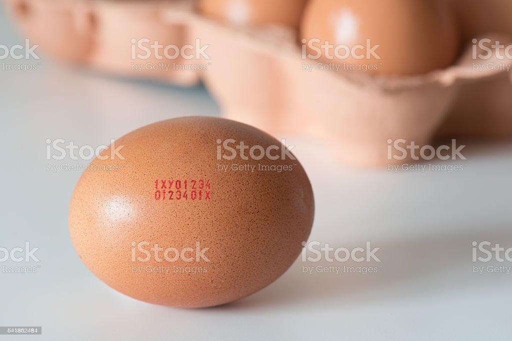 European marking code numbers printed in egg stock photo