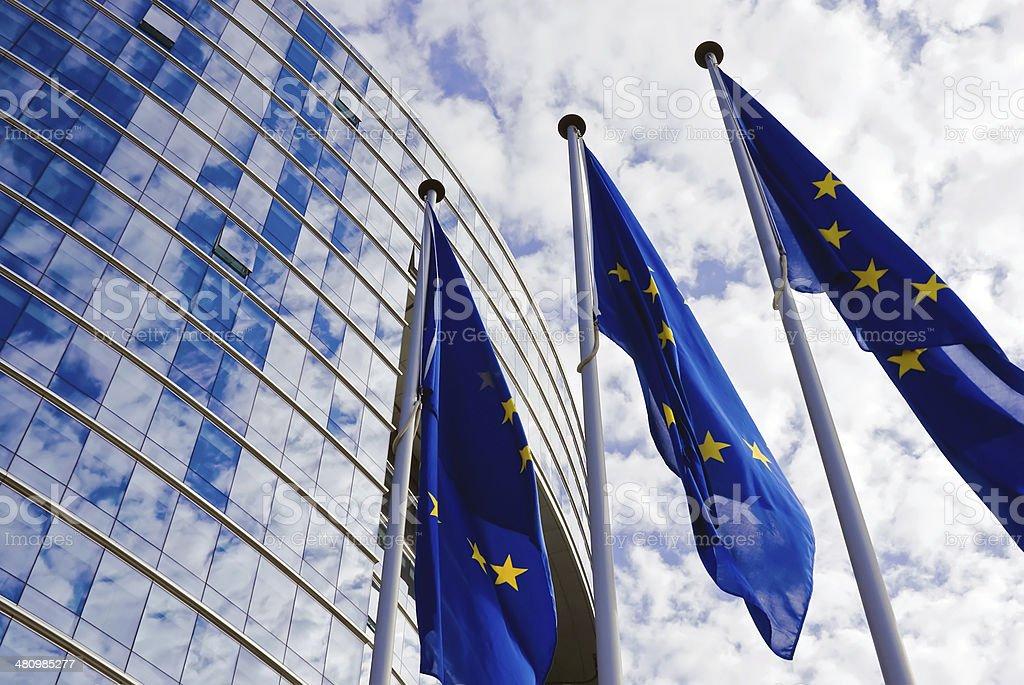 European Union Flags stock photo