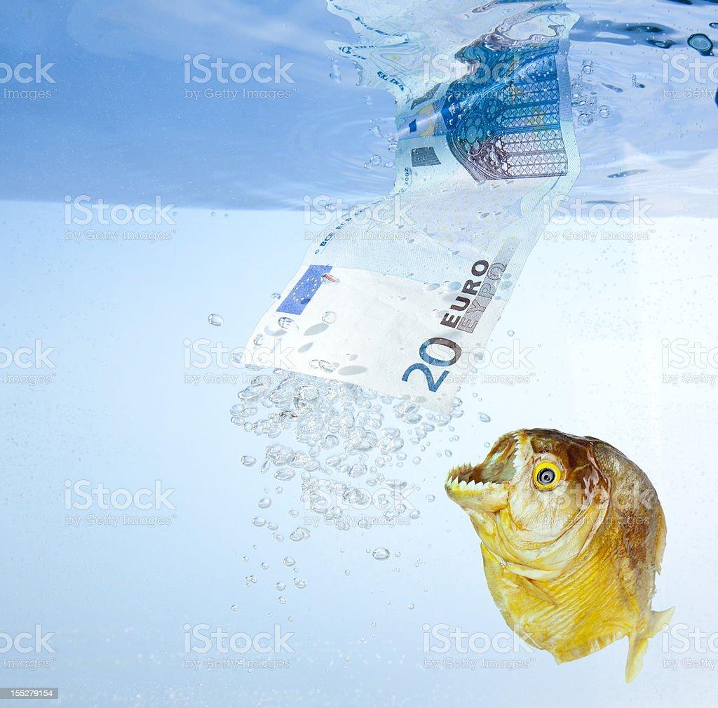Eurozone crisis royalty-free stock photo
