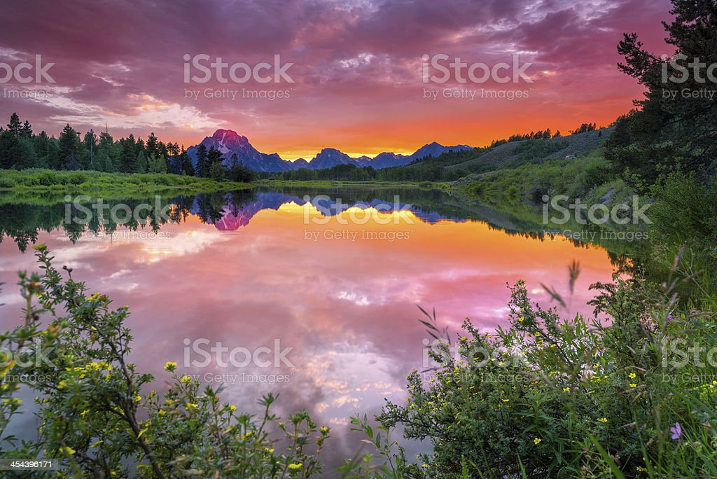 Evening at Oxbow Bend royalty-free stock photo