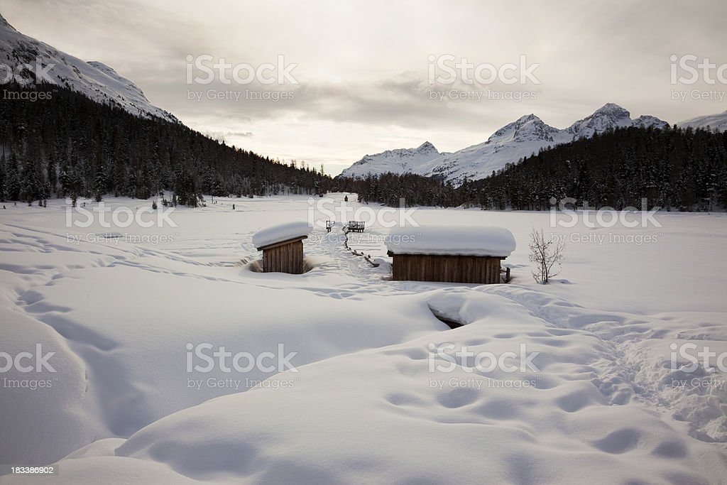 Evening at the Lej da Staz royalty-free stock photo