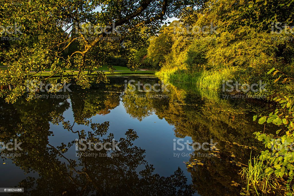 Evening autumnal reflections. stock photo