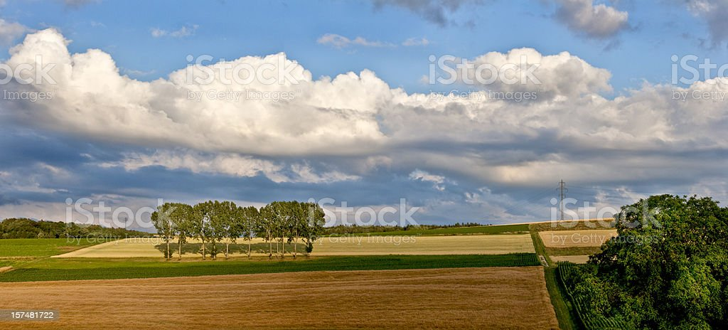 Evening Cloudscape Panorama with trees in a row, Switzerland, Vaud royalty-free stock photo