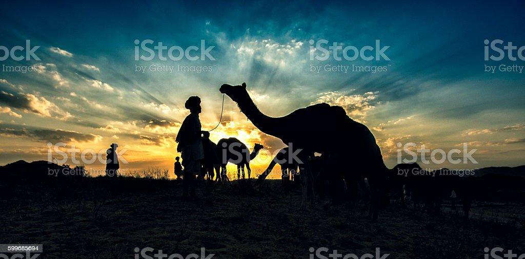 Evening from Puskar camel fair, Pushkar, Rajasthan, stock photo