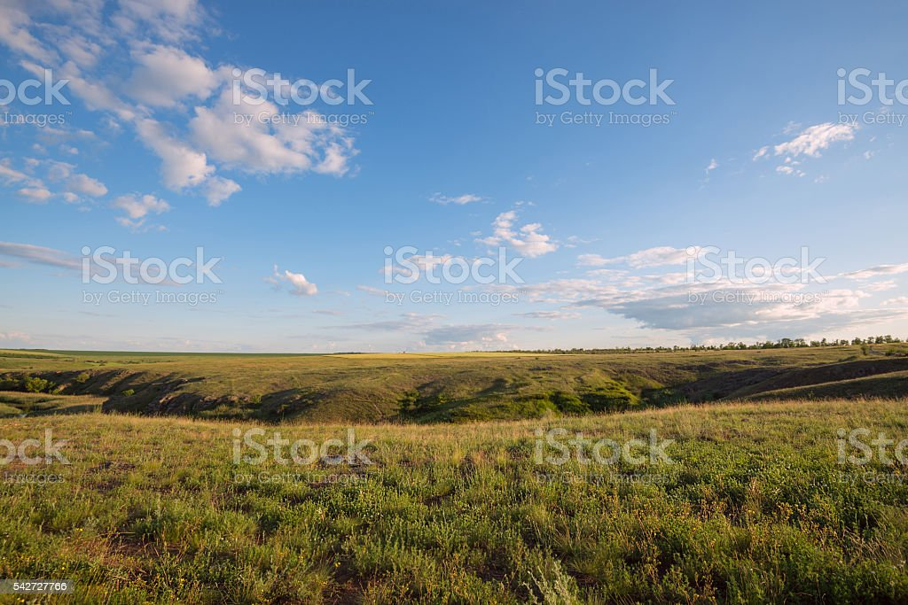 Evening in a prairie stock photo