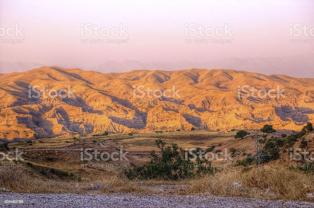 Evening in The Desert stock photo