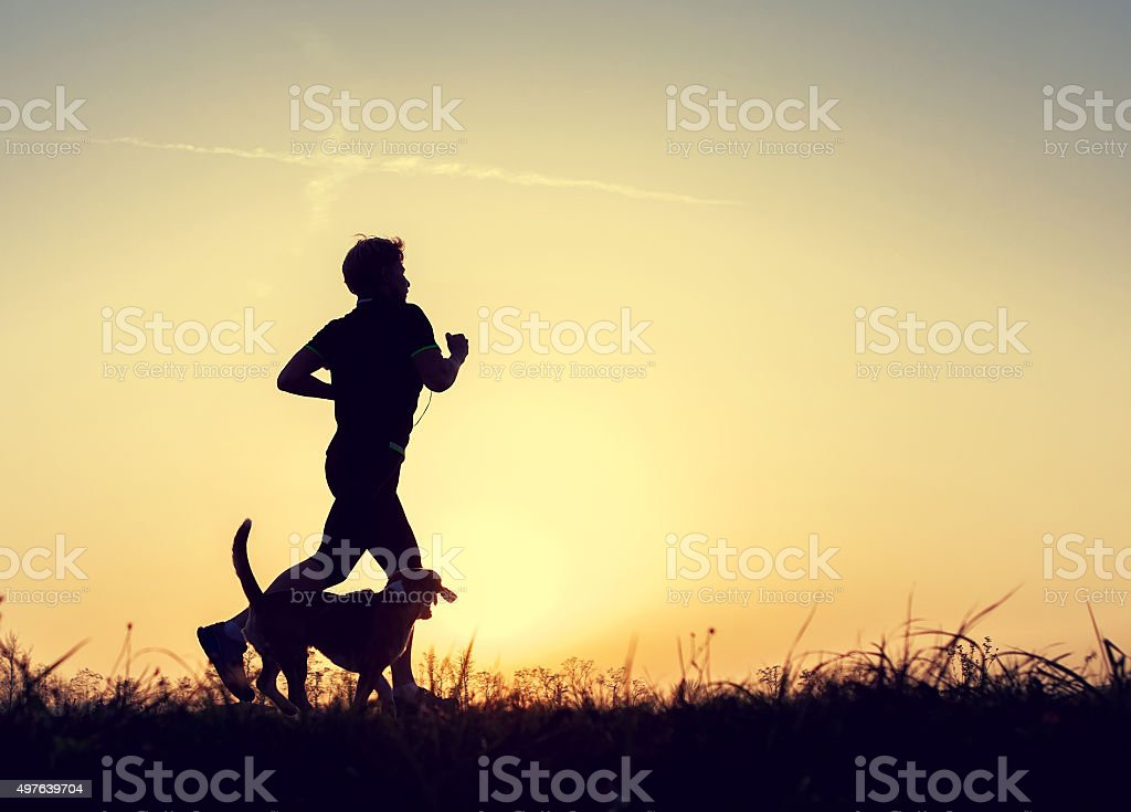 Evening jogging walk with a dog silhouettes stock photo
