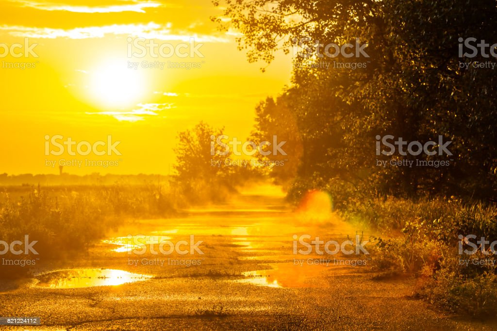 evening landscape, road after a rain stock photo