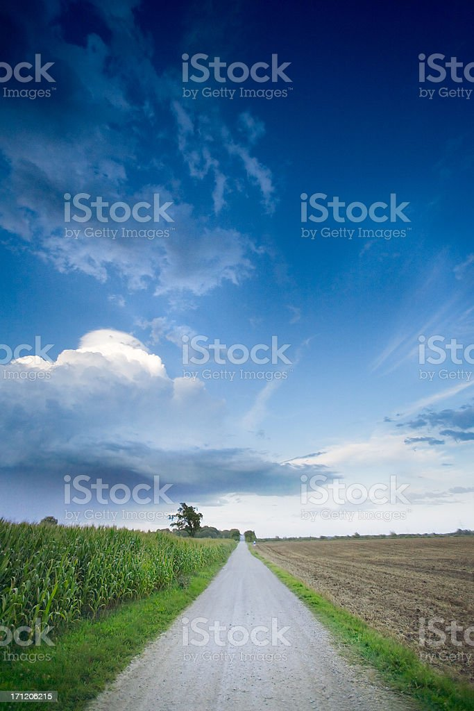Evening Lane royalty-free stock photo