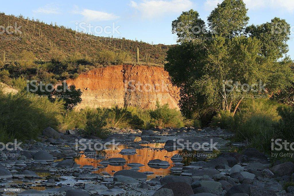 Evening Light on a Desert Creek royalty-free stock photo